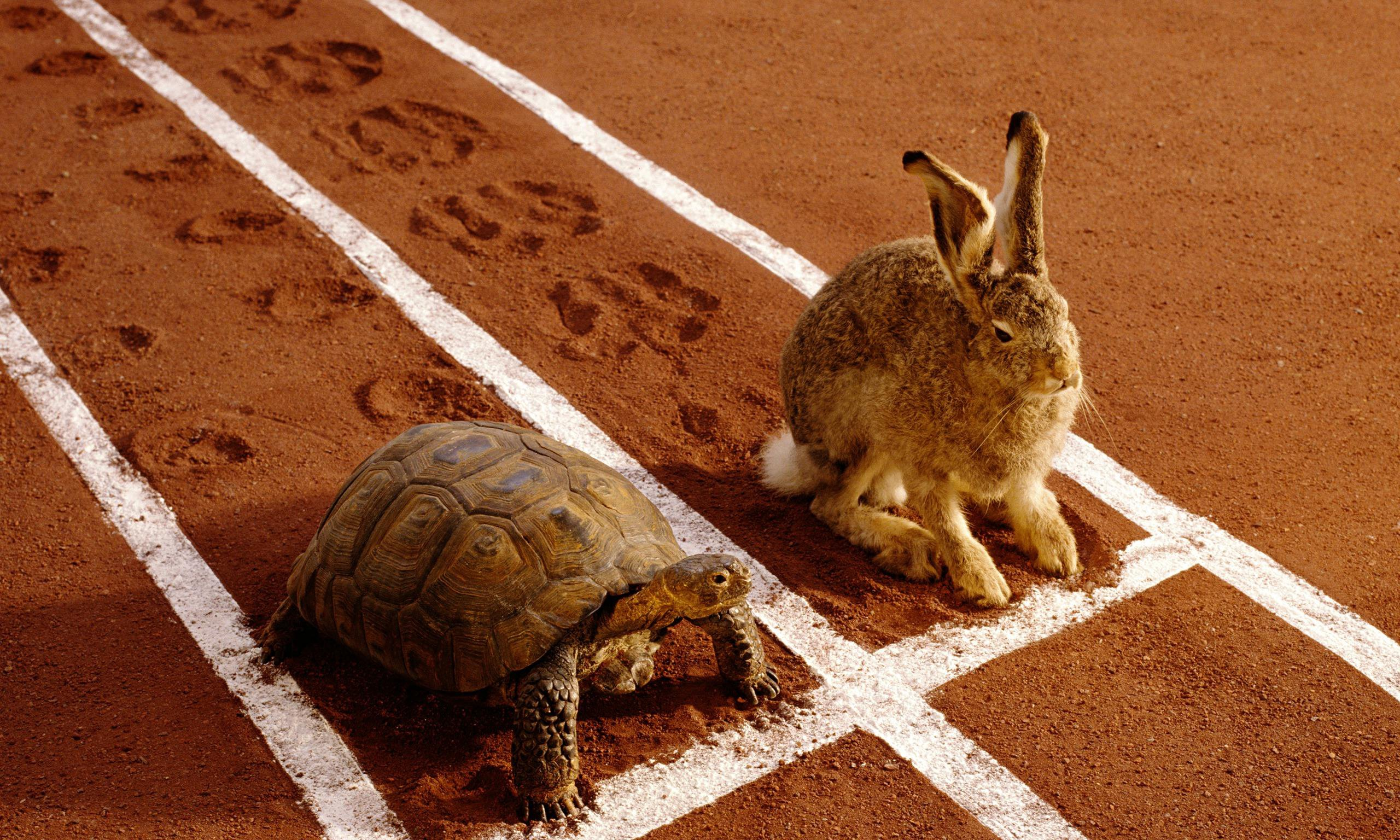 How long could the hare sleep and still win the race against the tortoise?  | by Krist Wongsuphasawat | Medium